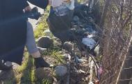 Të pastrojmë Shqipërinë