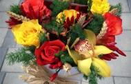 Bashkia Mat ju uron Gëzuar 8 Marsin