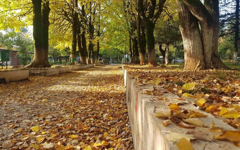 Vjeshtë në Parkun