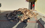 Nis shpërndarja e drurëve të zjarrit